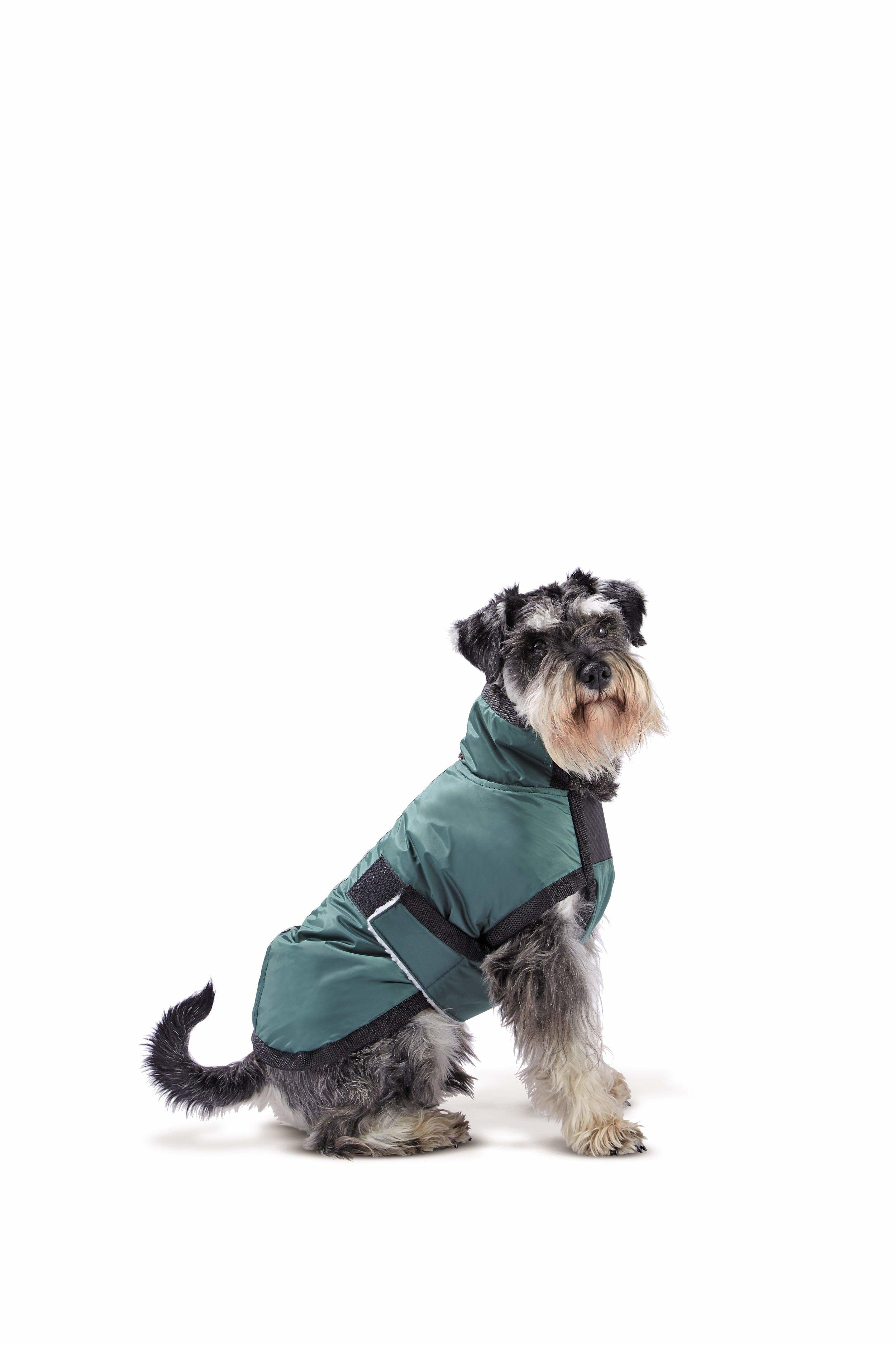 Waterproof Dog Coat.jpg