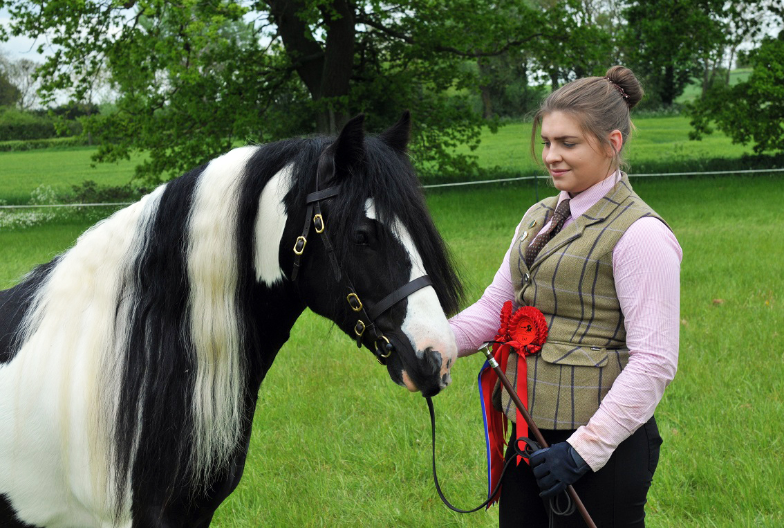 2016 Redwings Show Reserve Champions - Chloe Fulcher and Tilbury's Lad (Pic: Redwings)