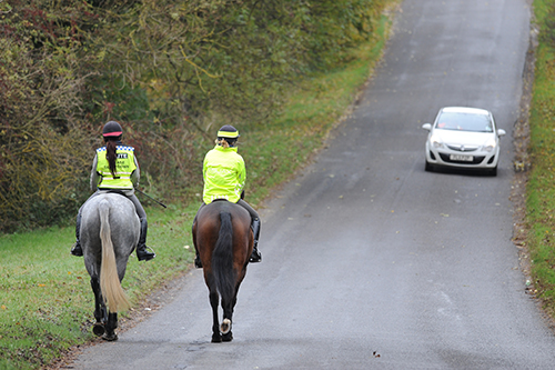 hacking horses on the road.JPG