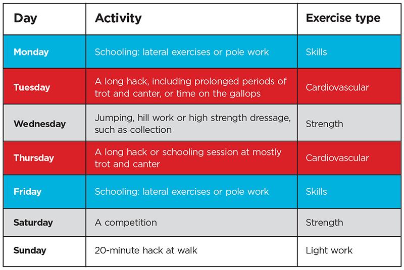 fitness plan.jpg