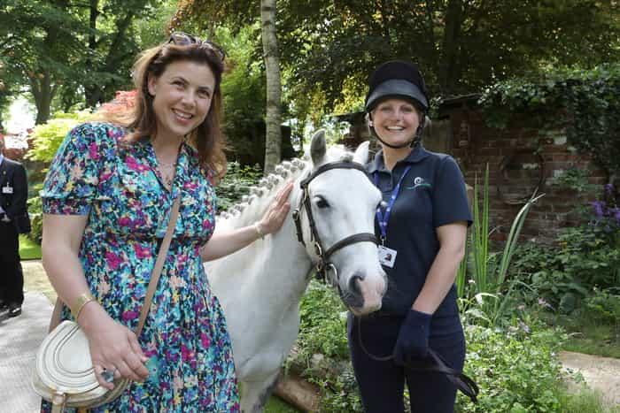 World Horse Welfare Clippy meets Kirstie Allsopp at RHS Chelsea 2017 (Pic: World Horse Welfare)