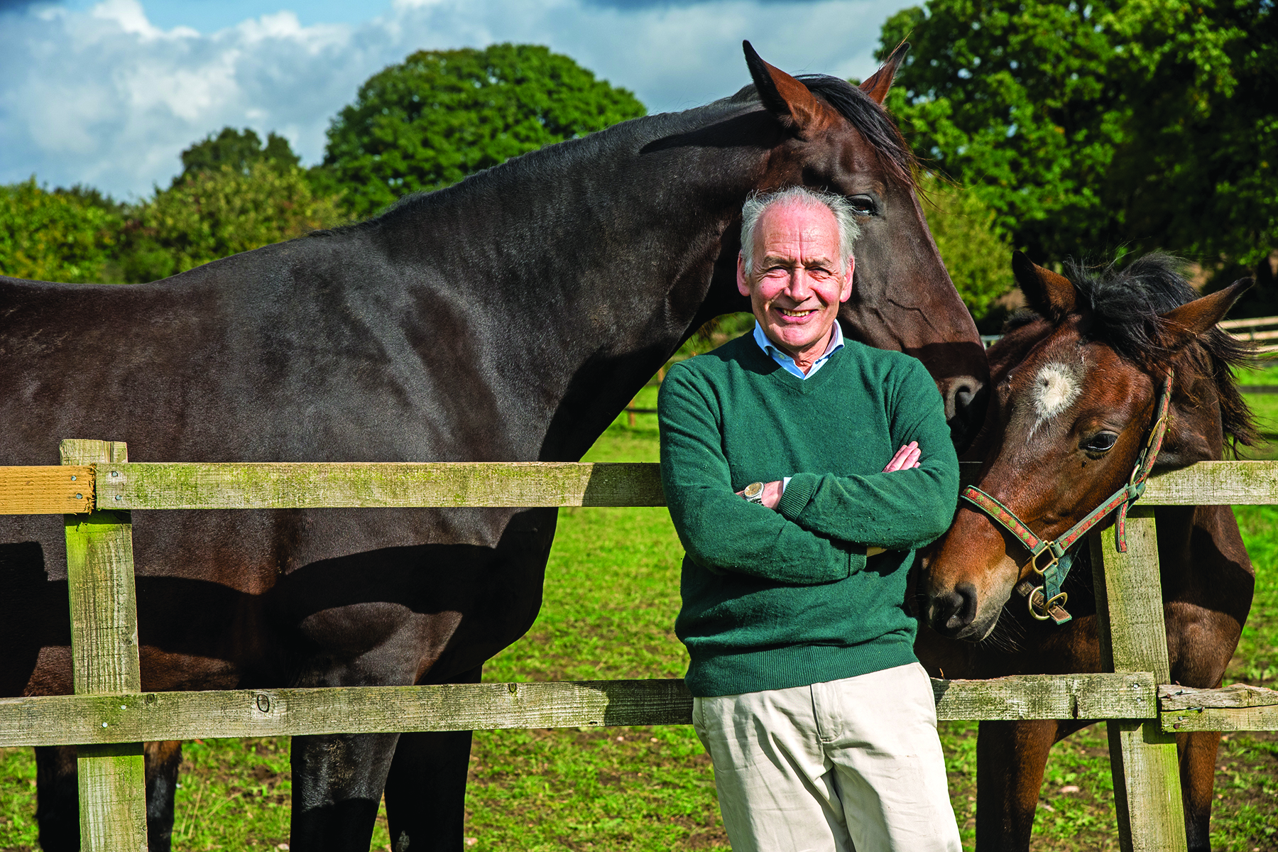 Alastair has 15 horses and ponies Pic: ©Brooke / Stella Scordellis
