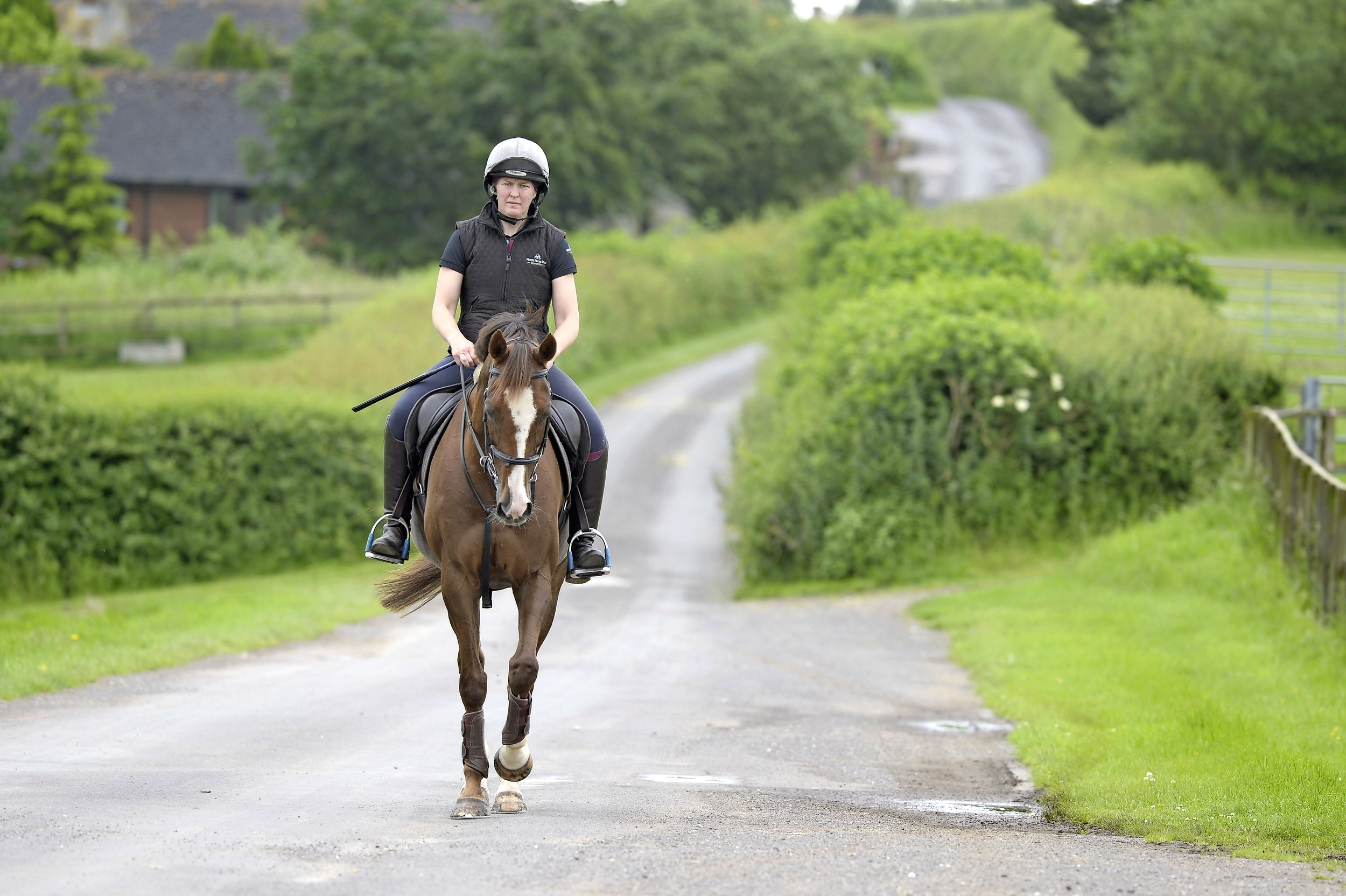 Retraining racehorses with the right aids and hacking out