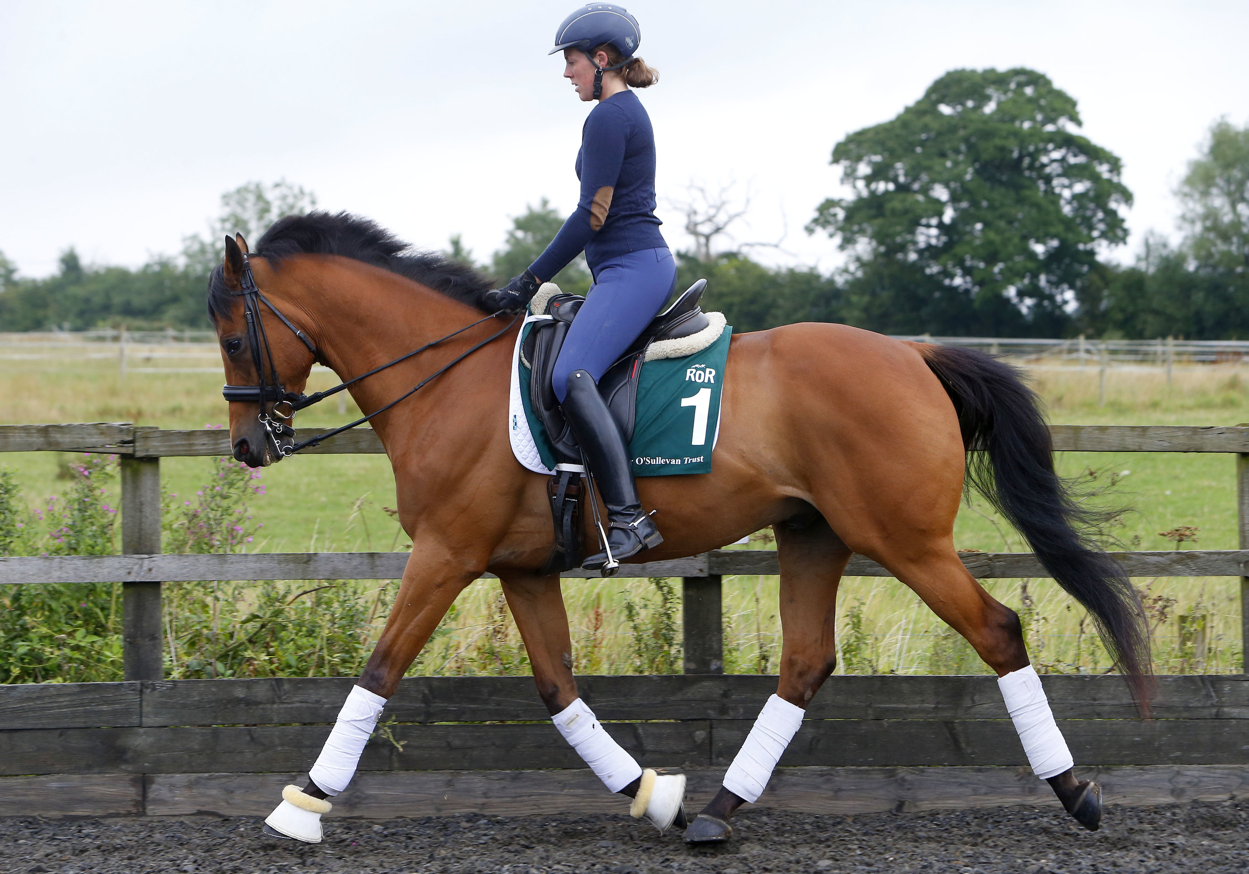 Louise Robson and Quadrille - one of two former racehorses owned by HM The Queen that is set to parade at Ascot on 29 July 2017