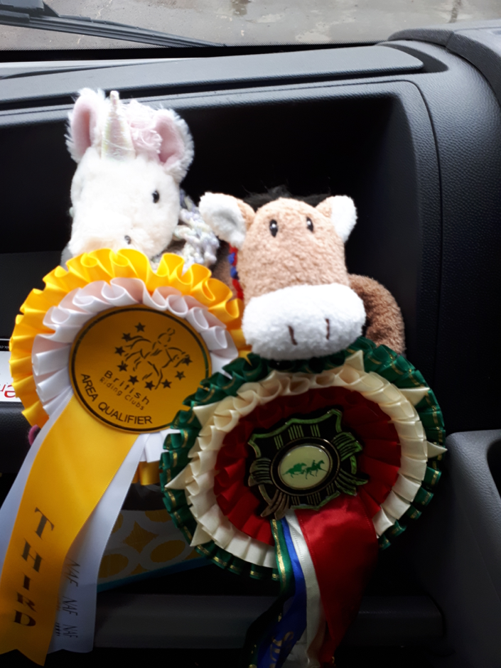 Since Socks doesn't like to wear her rosettes, Bearberry and Angel wore them for her!