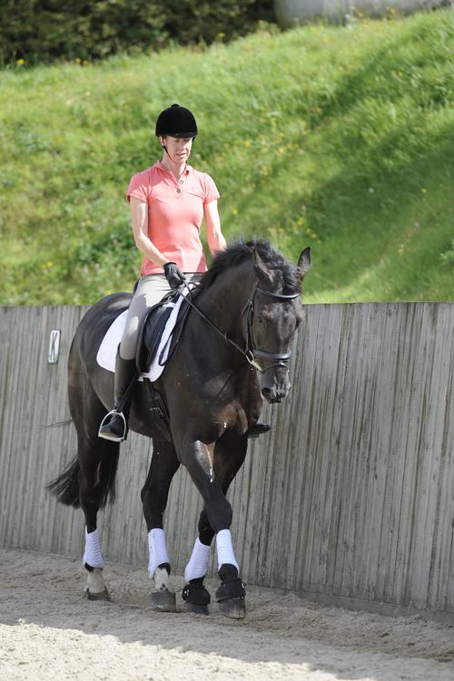 horse-riding-contact