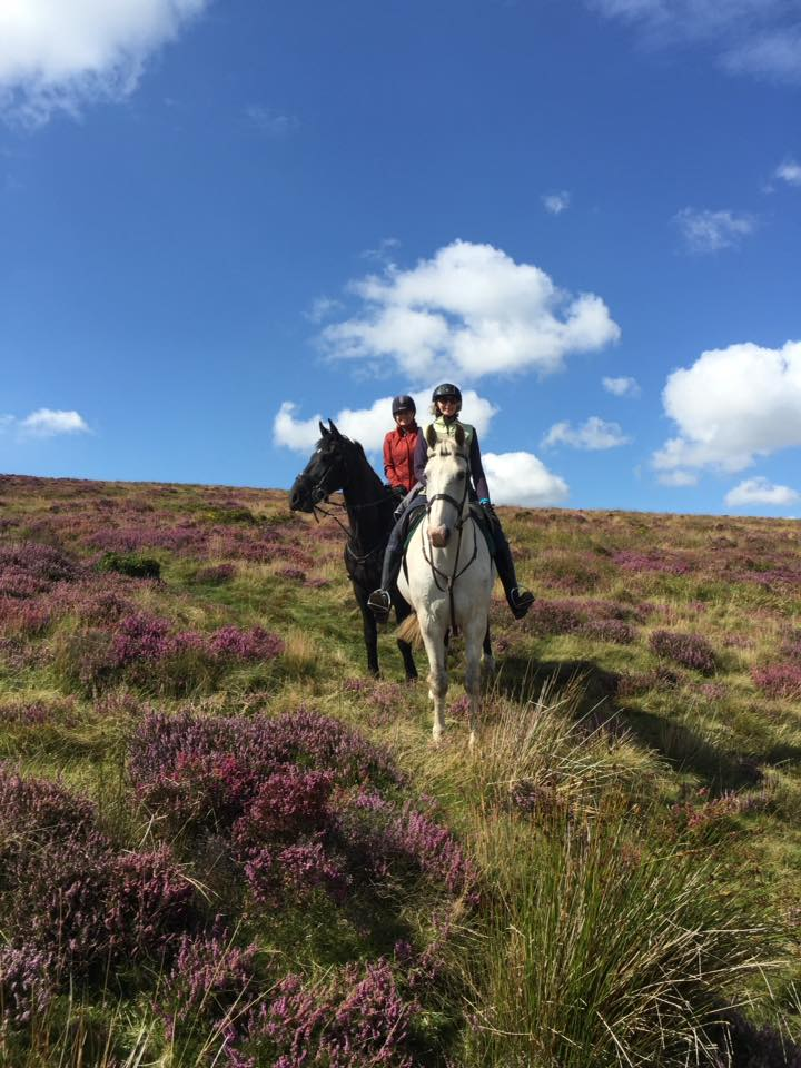"""I'm feeling truly blessed. It feels as though there have been just three splendid days so far this month, and we've been lucky enough to get out on each of them with guests clocking up a total 60 miles. There's no doubt about it..... Dartmoor is splendid in September and especially when the sun shines!"""