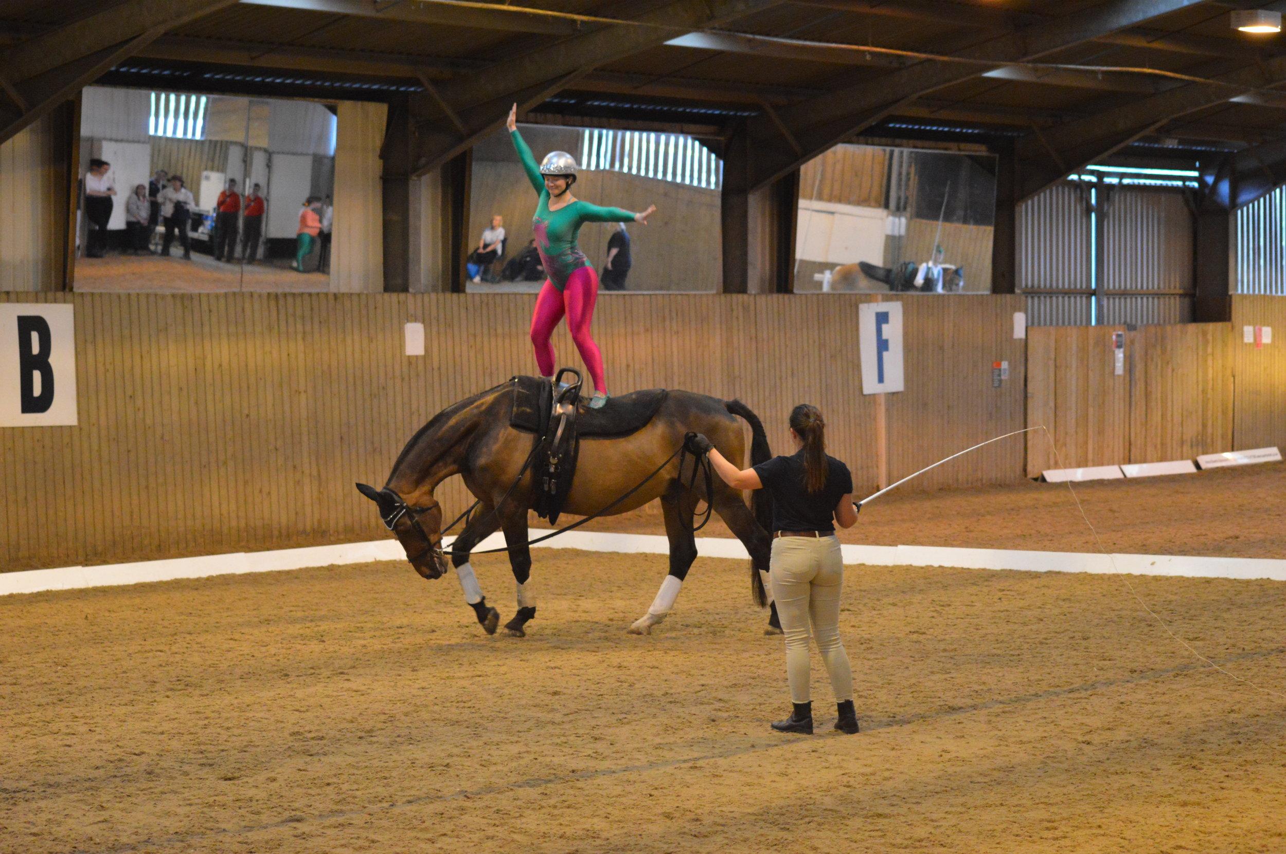 Competing at Hartpury (RDA Champs)