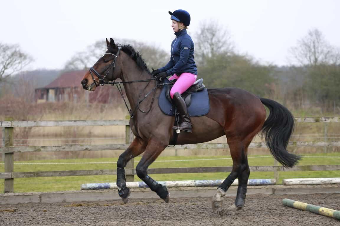 horse-riding-over-pole