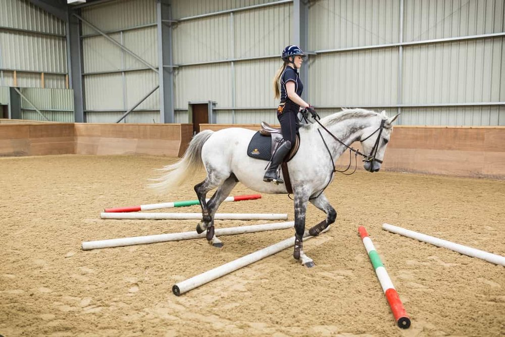Supple your horse - Here's how with poles