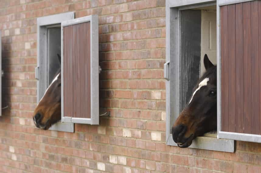 Sensors can detect movements in your horse's yard
