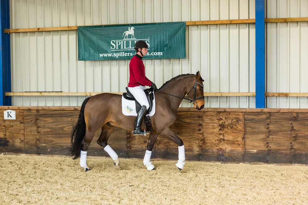Your horse will be relaxed in his jaw and able to take an elastic contact when he's working in the correct outline.