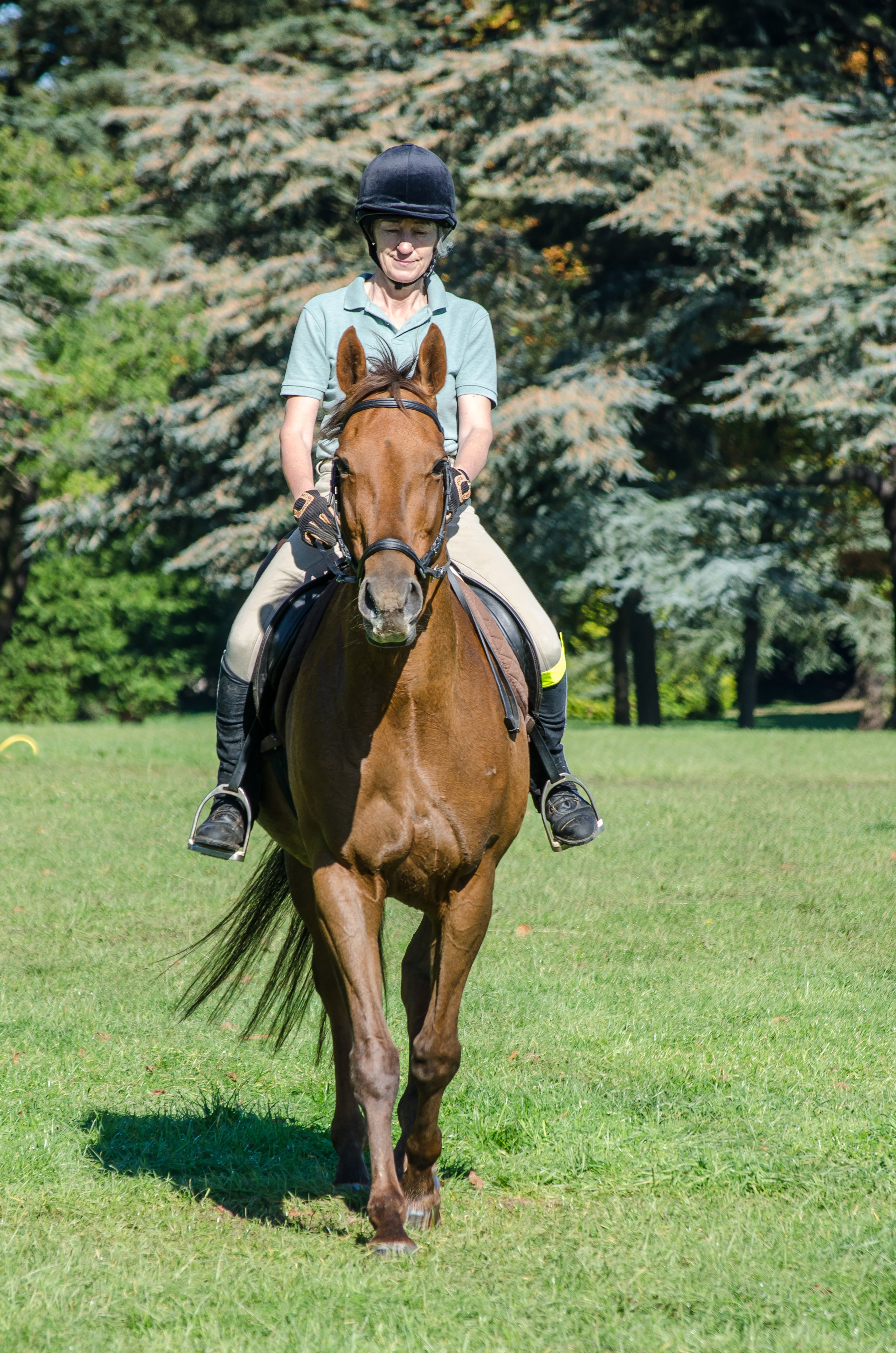 It won't be long until summer (and long hacking) arrives (Pic:Abingdon RDA)