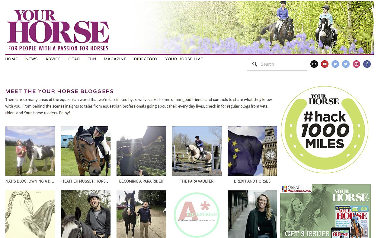 Your Horse blogs.jpg