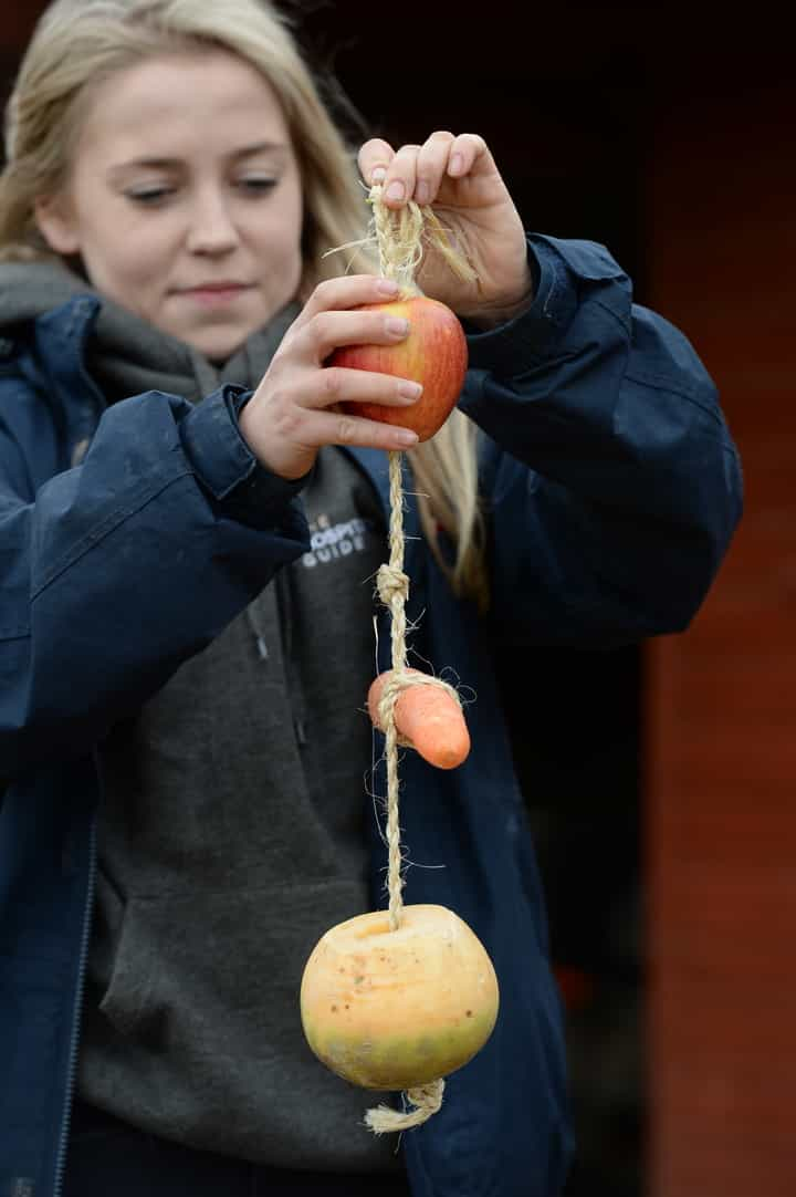 Root veg can be a healthy treat