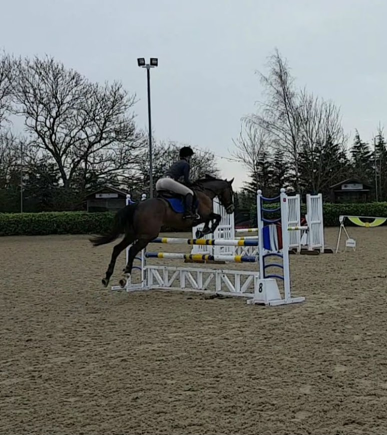 A nice jump, but sadly no match for last-fence-itis