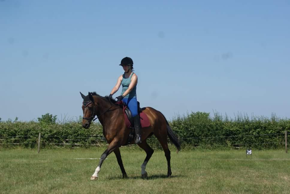 Socks and Heather nailing the dressage together