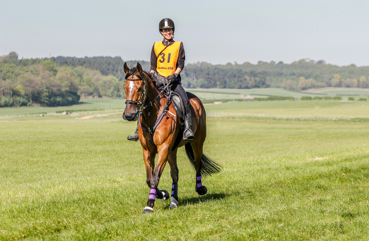 Ex-racehorses just love a new challenge