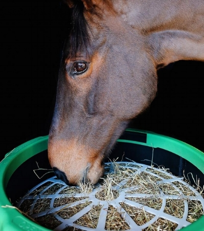Your horse's forage ration will last longer with the Haygain Forager
