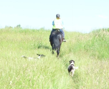 Wendy Barton with canines in tow