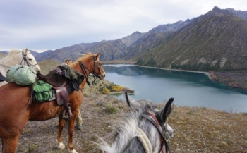 Bettina Yockney enjoys the views in New Zealand
