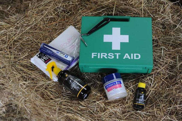 firstaid-1.jpg
