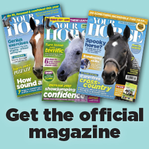 Read at your pleasure - Celebrate your challenge with a subscription to the official #Hack1000Miles magazine - Your Horse! Save on shop prices, never miss an issue and receive exclusive subscriber rewards.