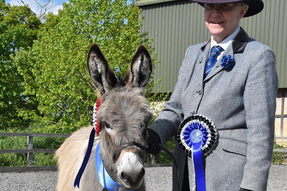 Reserve supreme champion went to Diana Dunstan, from Shillington, Hertfordshire, with her one-year-old British donkey Perehill Tia.