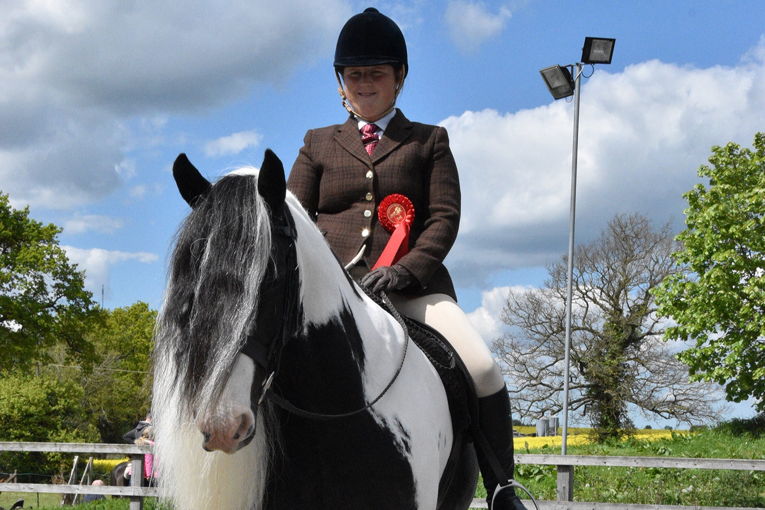 Redwings Jacob and his guardian Rebecca Wright took first place in the best ridden rescue class.