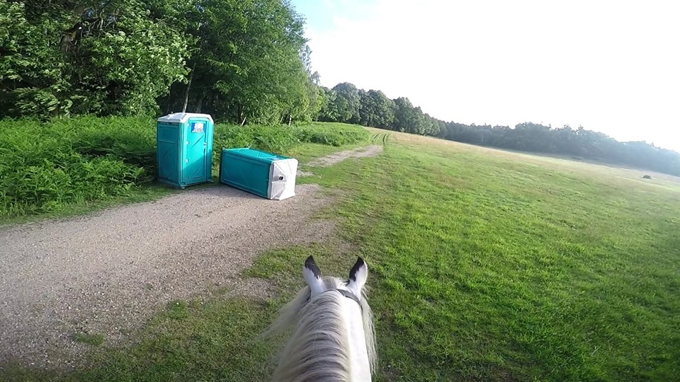 'When you've gotta go' – Anna saw some portaloos out and about
