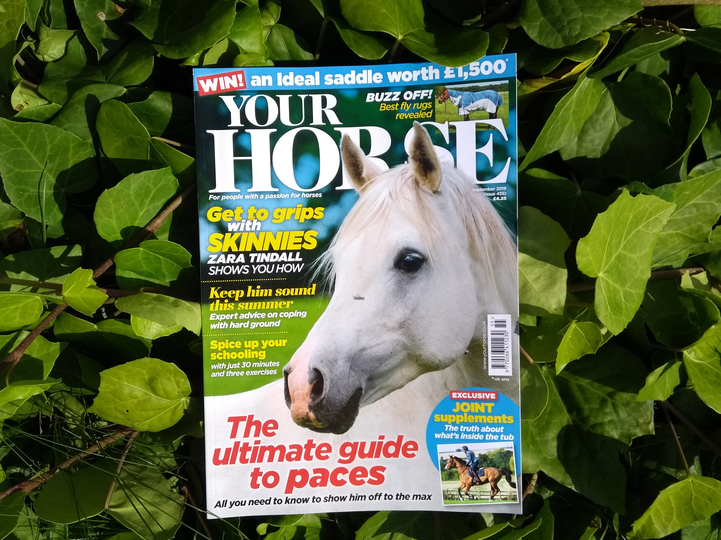 626a7b87 Inside the September issue of Your Horse magazine Your Horse Magazine