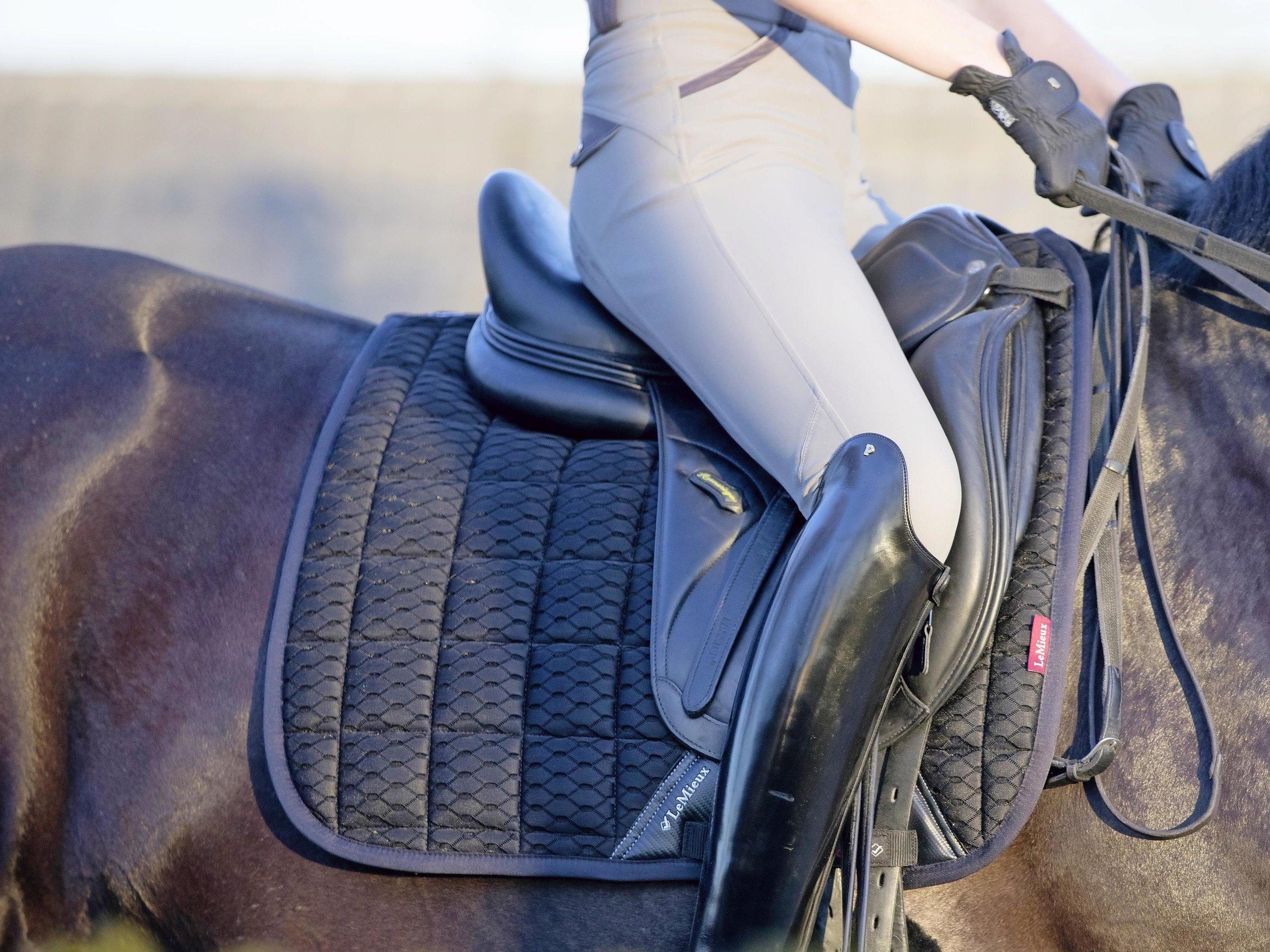Riding saddlecloth.jpg