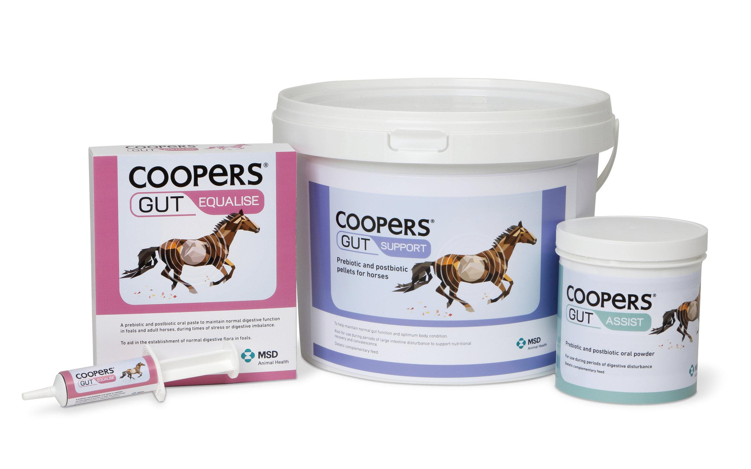 MSD Coopers Gut Range.JPG