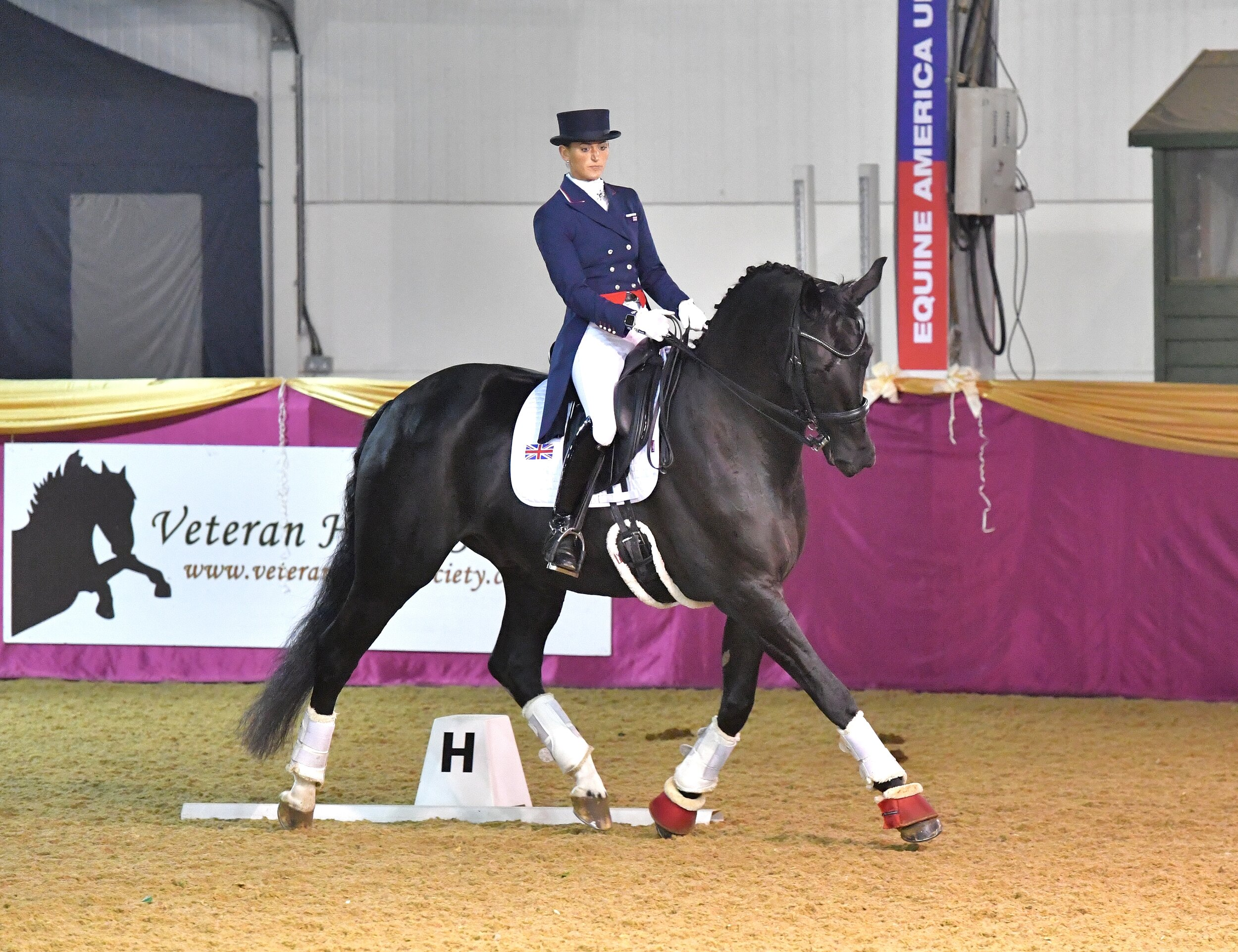 VHS member, Lindsay Hancock, gave an outstanding dressage to music performance with her Team GB horse Barachiel