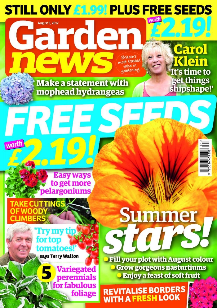 Carol Klein says the clock is ticking! It's a race against time to get the garden at Glebe Cottage in tip-top condition.   The Garden News Team are clearing bedding to plant new borders, spraying roses, protecting dahlias from earwigs, and sowing baby carrots with spring onions.   Our Garden of the Week is quintessentially English, but boasts many rare and unusual plants from around the globe!   This Week's Features: Our pick of the August superstars; Grow the best nasturtiums; Savour soft summer fruit.   Garden News Expert Contributors : Ken Abel on pelargoniums, and Graham Strong on bedding. Plus all our regular columnists!