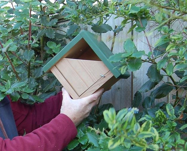 Bird boxes - main pic.jpg