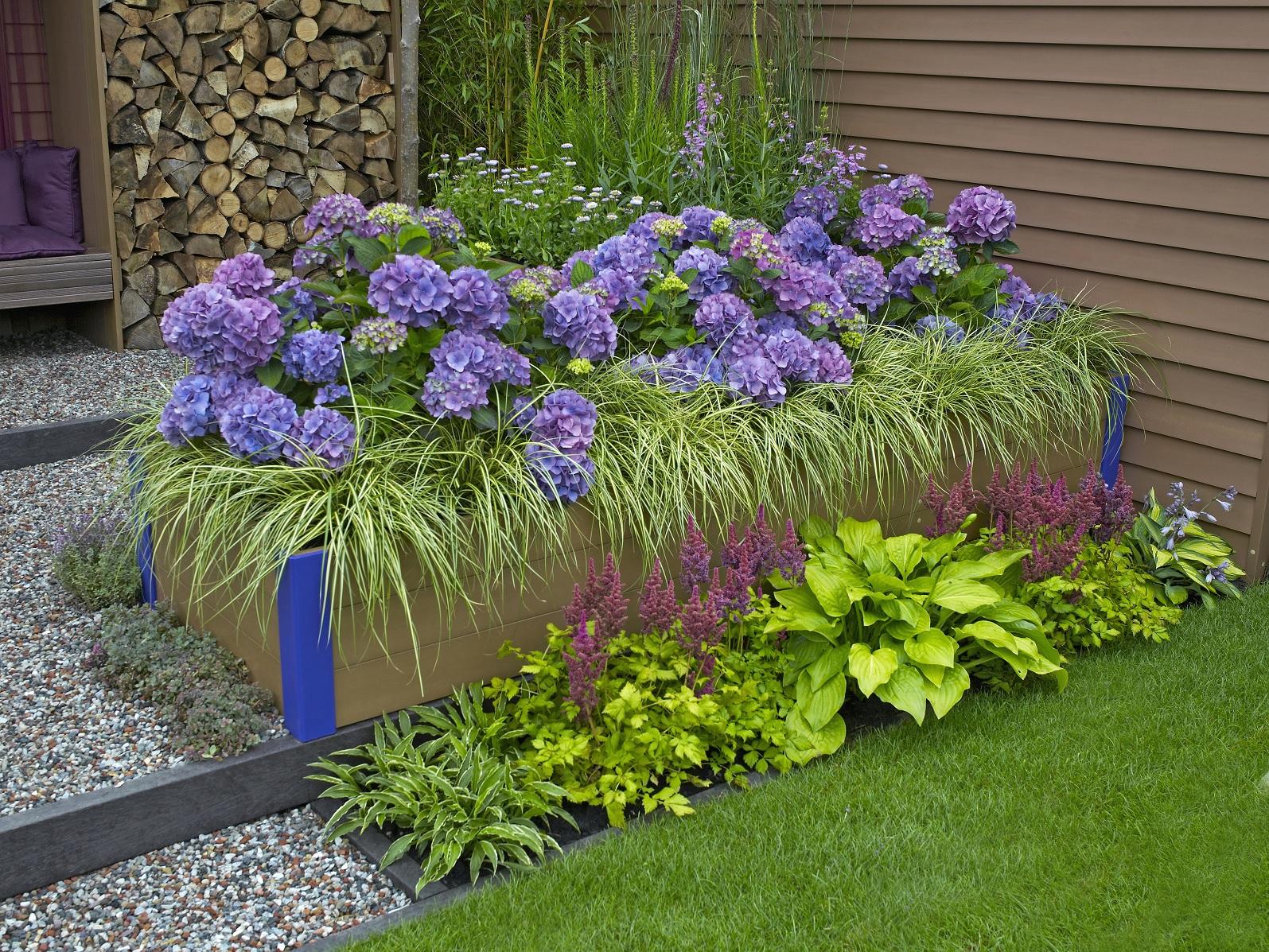 shutterstock_555819016- Acid-Loving Plants.jpg
