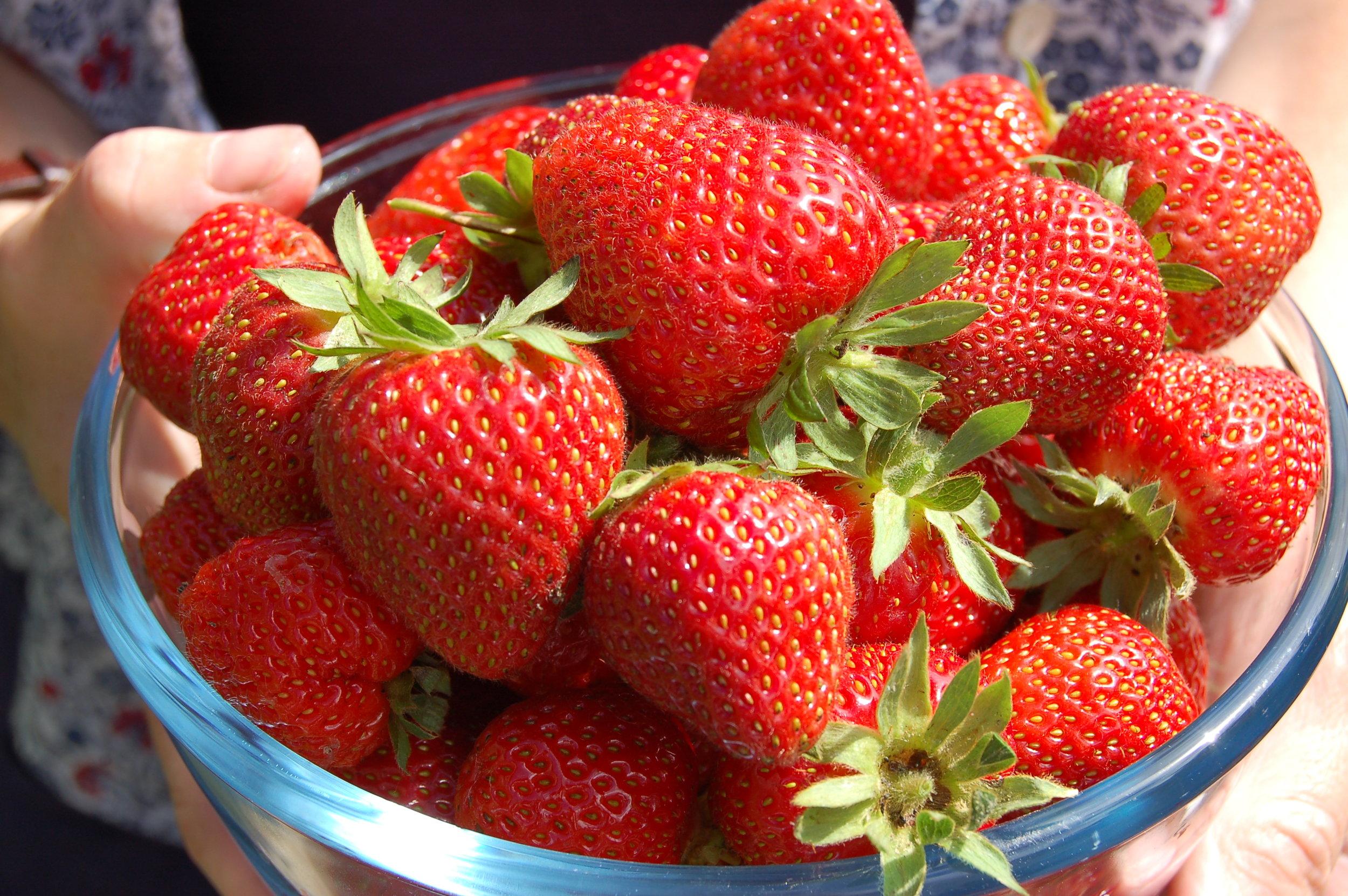 Strawberries -step 4.JPG