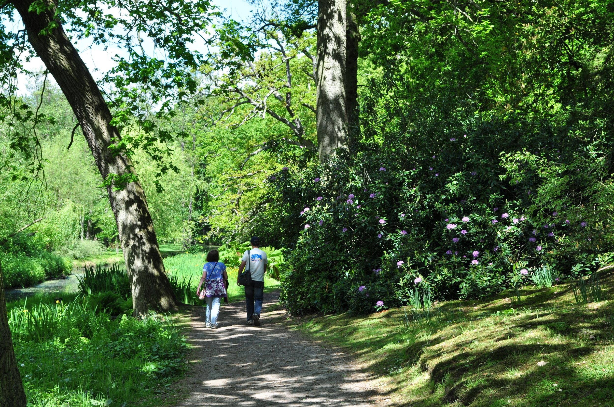 Fairhaven Woodland Garden.jpg