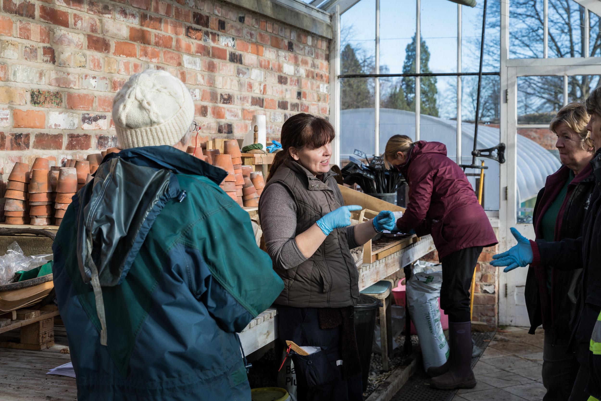 Lisa and volunteers.jpg