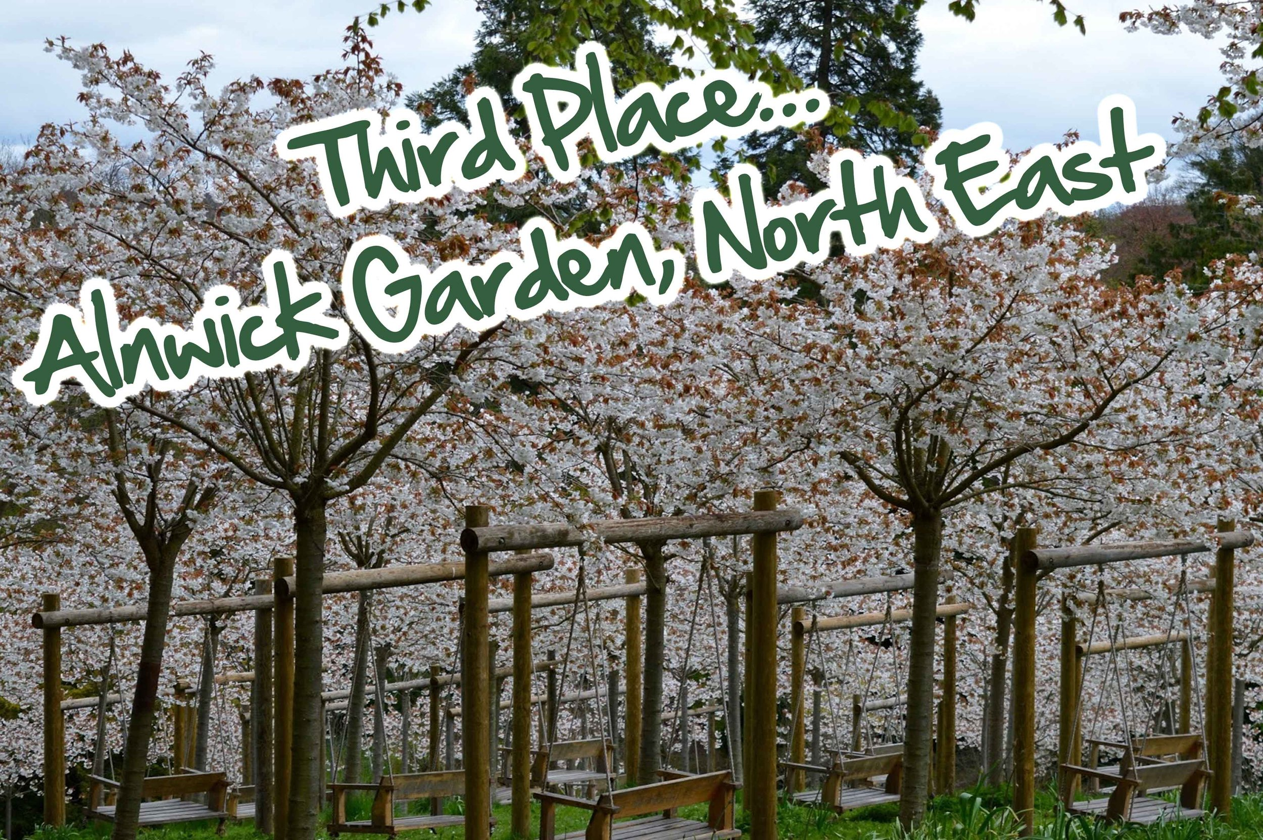 Number 3 - Alnwick Garden, North East