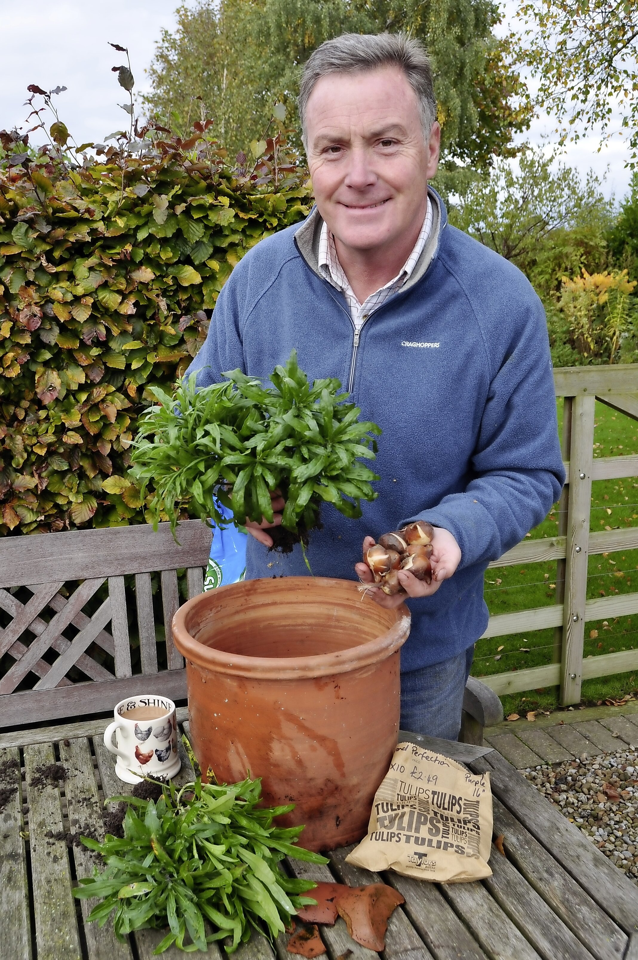 Tulip & wallflower pot - main pic.jpg