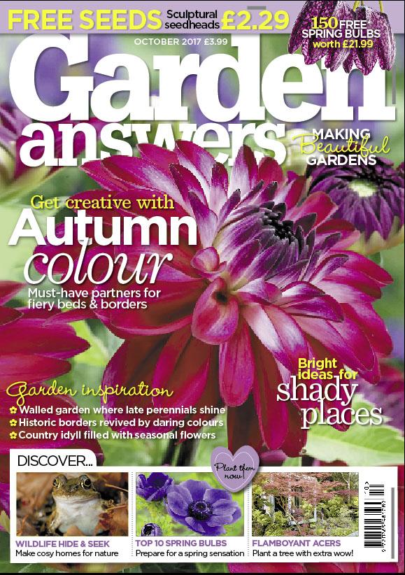 Cover Oct 2.jpg