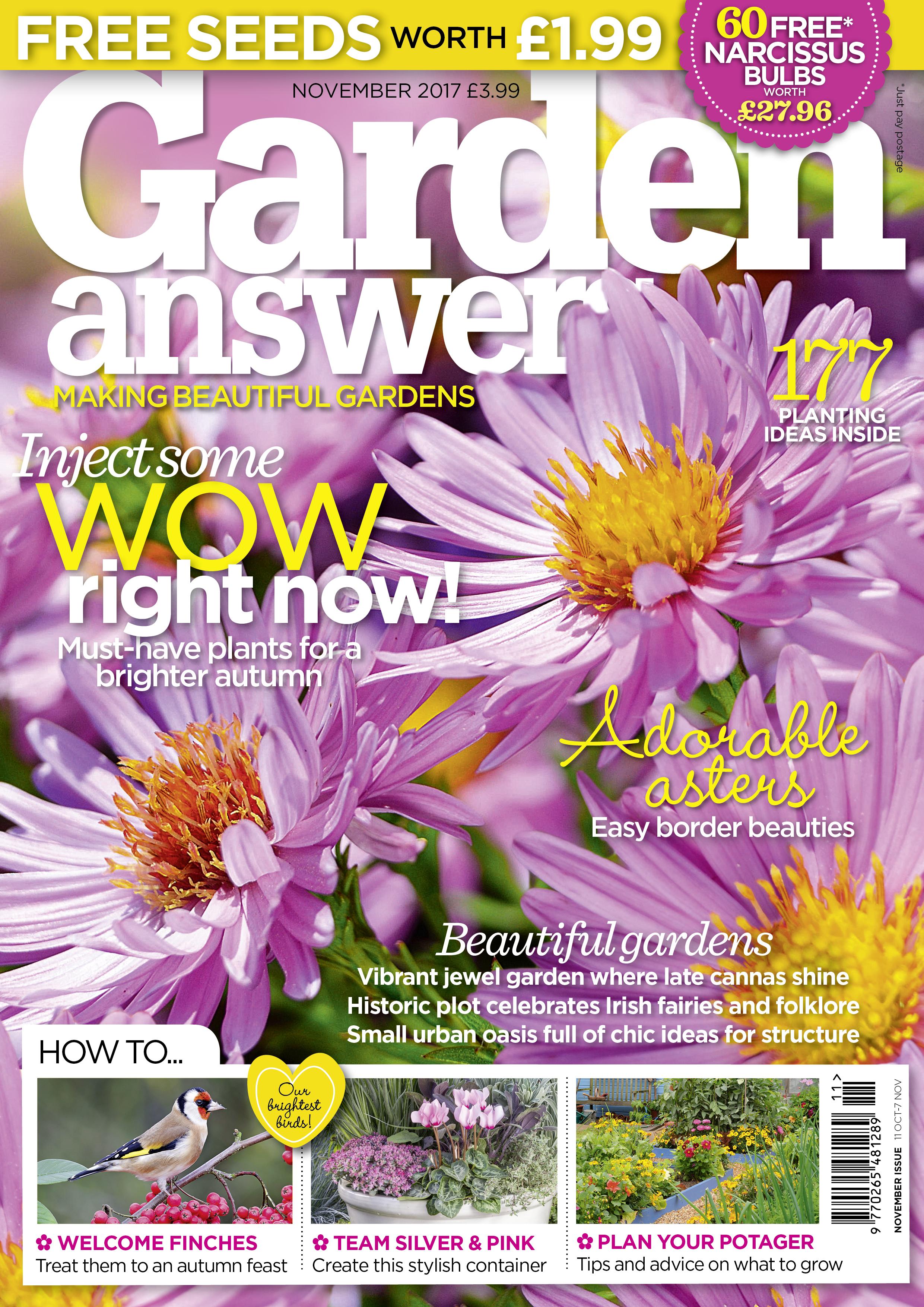 12 GA Nov 2017 newsstand.jpg