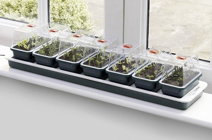 Heated 13W windowsill propagator £33 Greenhouse Sensation 0845 602 3774; www.greenhousesensaton.co.uk