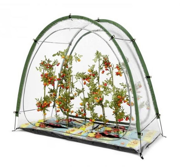Culticave UV Stabilised Patio Greenhouse £49.95 Greenhouse Sensation 0845 602 3774; www.greenhousesensation.co.uk