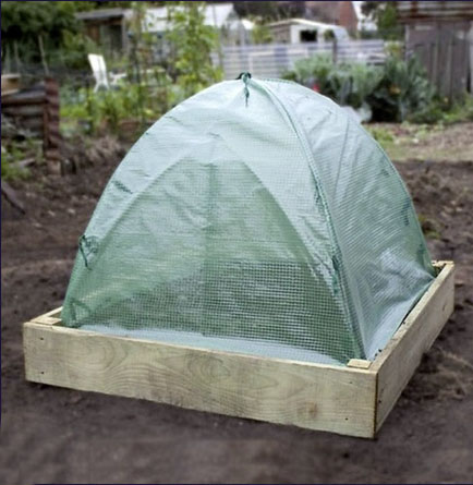 Easy Gro pop up cloche £6.50 The Garden Factory 01376 573302; www.thegardenfactory.co.uk
