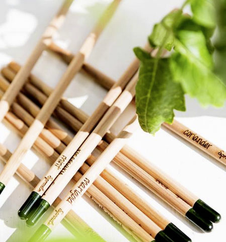 Set of Six Sprout Herb Growing Pencils £19.95 by Letteroom at Not on the High Street 020 3318 5115; www.notonthehighstreet.com
