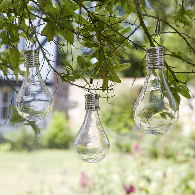 Solar Edison Style Lights £4.50 each Worm that Turned 0345 605 2505; www.worm.co.uk
