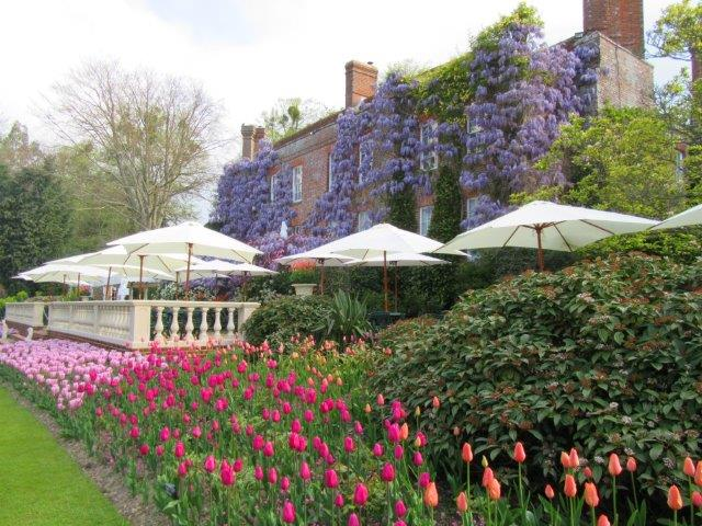 PASHLEY MANOR GARDENS Tulips wisteria and new balustrading by Kate Wilson 1 (004).jpg